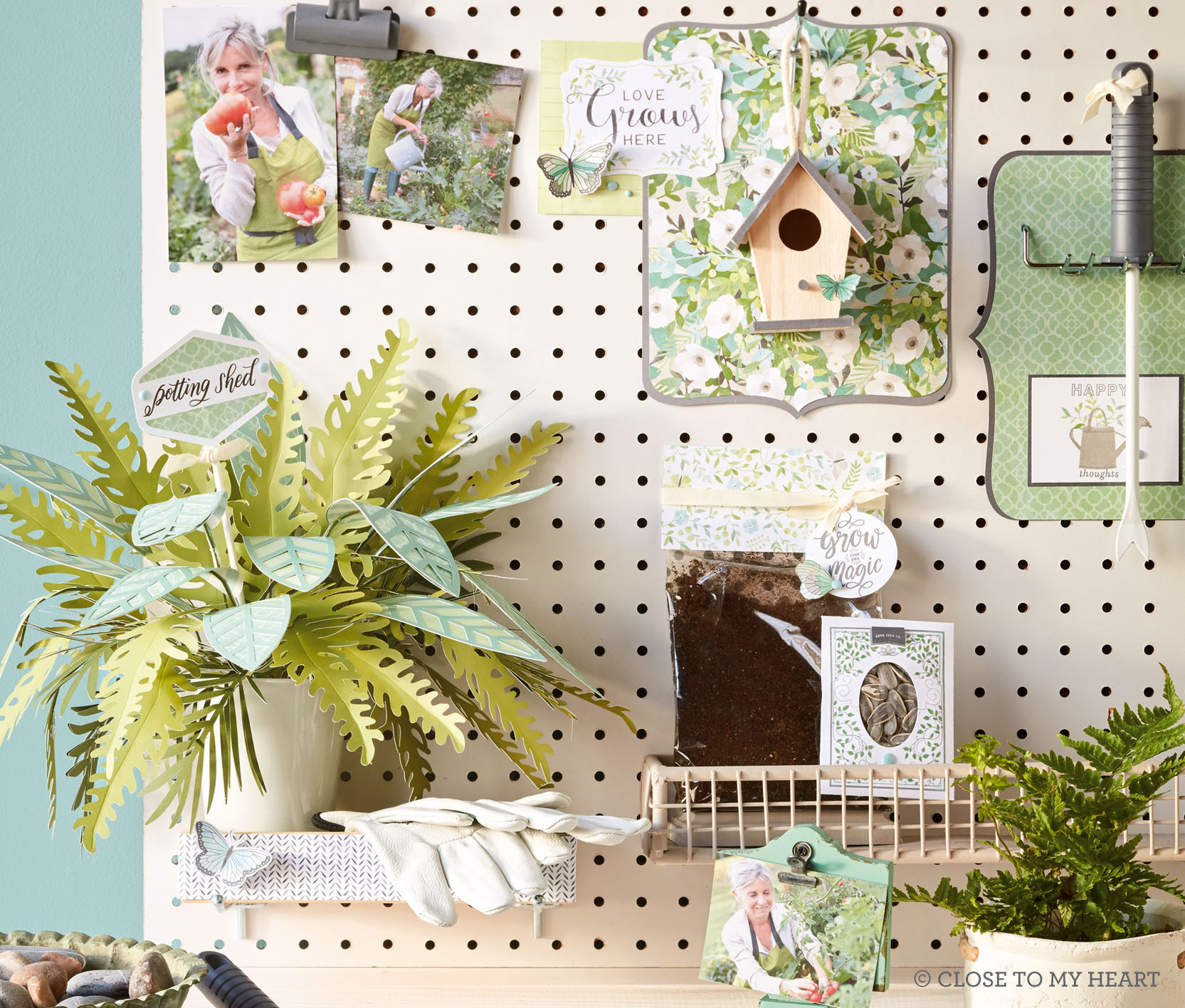 CTMH SEASONAL EXPRESSIONS 1 CATALOG - It's full of wonderul NEW products and ideas!
