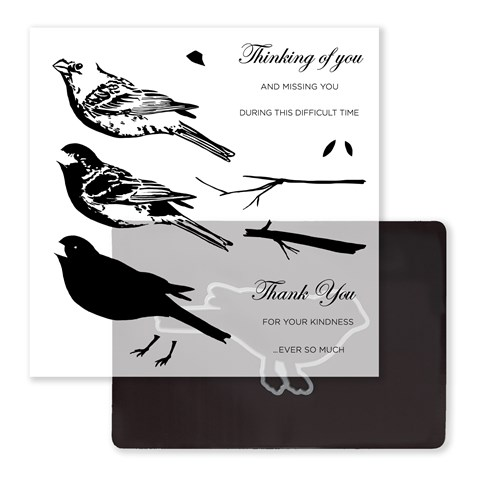 Thoughtful Bird Stamp + Thin Cuts (Z3377)