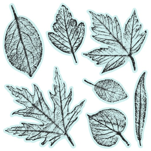 Textured Leaves (D1944)