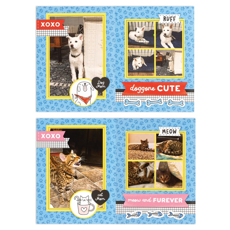 Best Friends Furever Cut Above® Kit