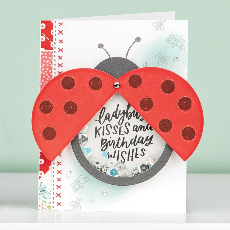 Ladybug Shaker Window Thin Cuts