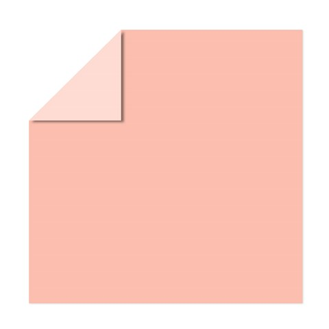 Peach Cardstock (X6044)