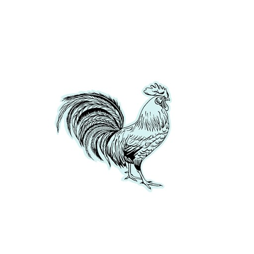 Country Rooster (M1267)